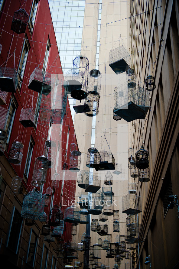 hanging bird cages in an alley