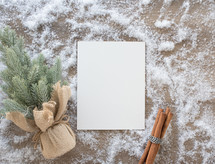 small Christmas tree, envelope, and cinnamon sticks in snow