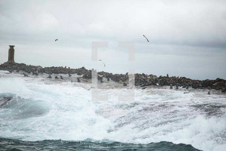 waves crashing into rocks on the shore