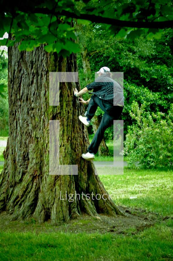 man climbing a large tree trunk