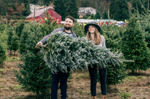 picking out a Christmas tree from a Christmas tree farm