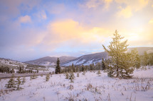 Snowy Rocky Mountain landscape in Colorado at sunset with evergreen trees on slopes