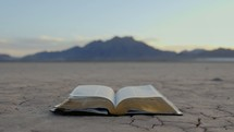 turning pages of a Bible on drought stricken land