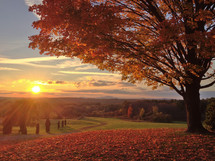 fall scene at sunrise