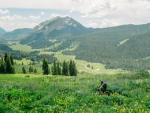 mountain biking in summer