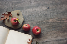 blank pages in an open journal, apples, and fall leaves
