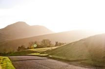 bright sunlight over a rural road in Edinburgh