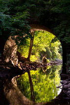 A stone arch over a stream in a forest.
