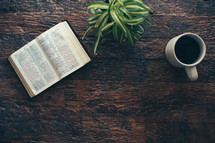 open Bible, houseplant, and coffee cup