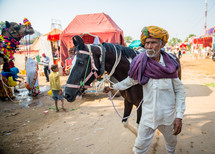 a man leading a horse in India