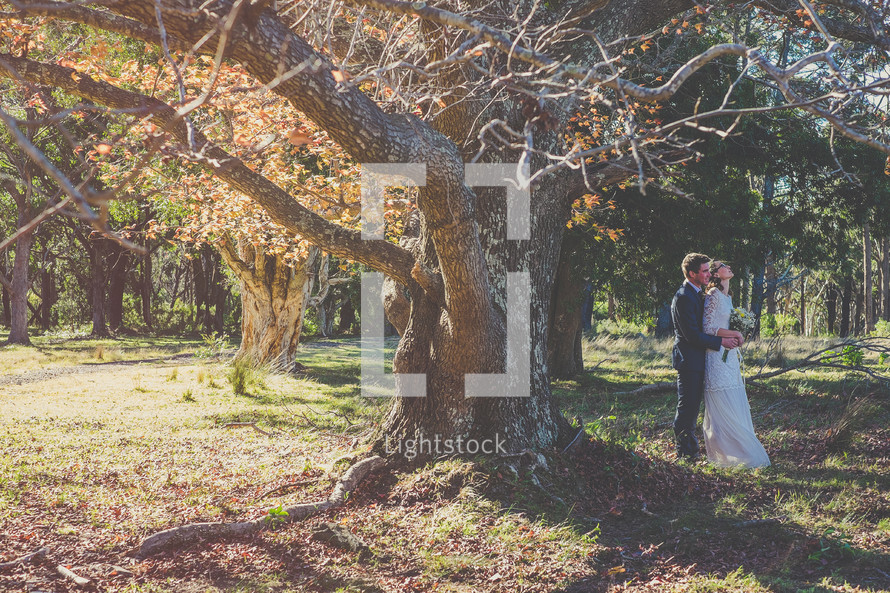 A bride and groom embrace under a tree.