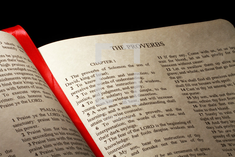 Open Bible in the book of Proverbs