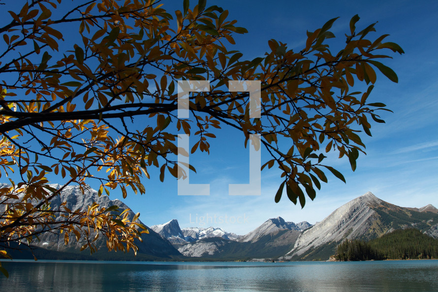 Tree limb against backgroud of mountains and water with blue sky.