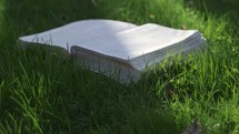 a Bible in grass