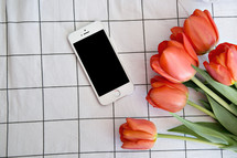 cellphone and tulips on table cloth