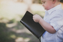 toddler boy holding a Bible