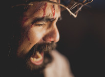 agony on the face of Christ