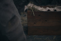 The manger in the stable