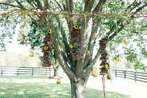 decorations hanging from a tree for an outdoor wedding