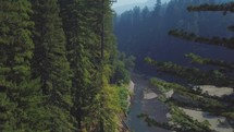 Beautiful aerial footage of a redwood forest in the mountains.