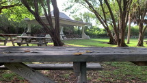 Wooden picnic bench in the middle of  a shaded park on a sunny day