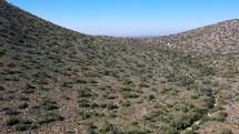 desert landscape in Scottsdale, AZ