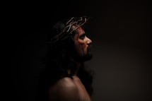 The suffering of Christ on the cross.  Jesus in His crown of thorns.