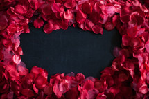 rose petal border