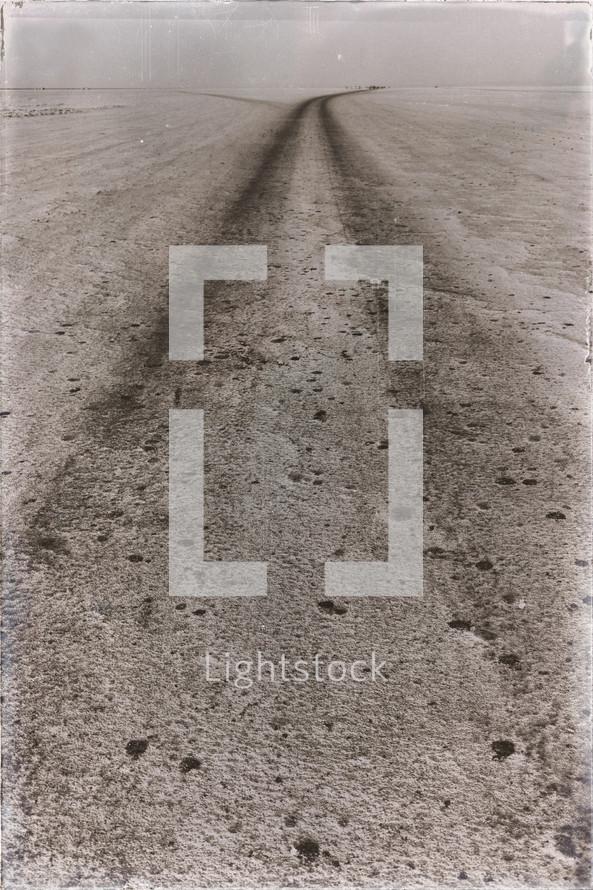 dirt road tracks in the desert