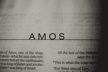 Open BIble in book of Amos