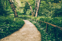 Path through the woodland