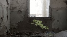 window in an abandoned building
