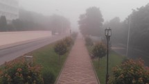 flight over a path in a foggy park