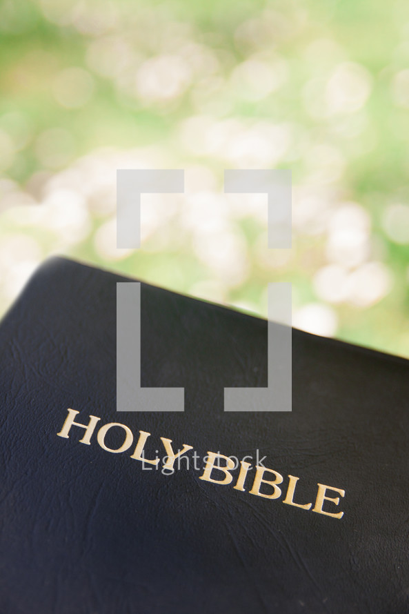 cover of a Bible