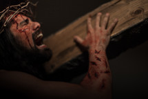 The suffering of Christ -- Jesus crying in pain while wearing His crown of thorns as He carries the cross.