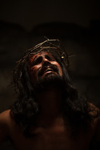 The suffering of Christ -- Jesus in His crown of thorns.