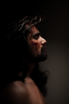 The suffering of Christ -- Jesus in His crown of thorns dying on the cross.