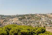 Mount Zion from the east.