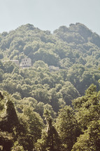 green forest and homes on a mountainside