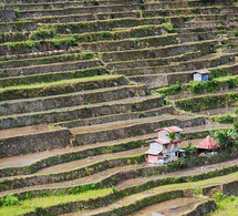 terraced landscape in the Philippines