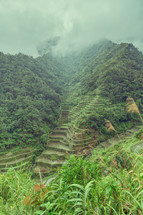 terraced field in Philippines