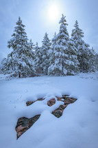 Rocks sticking out of snow in front of evergreen trees on the slope of a mountain vertical