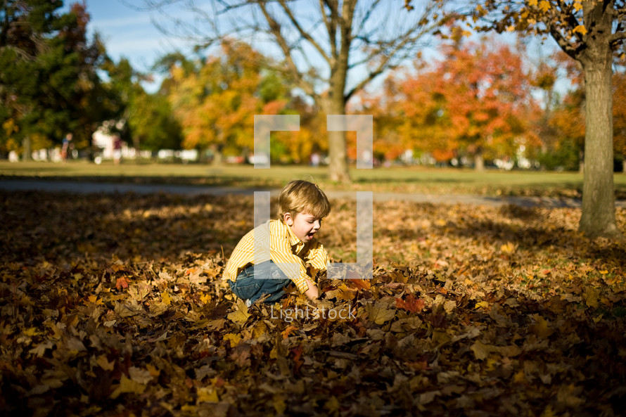 toddler boys playing in a pile of leaves