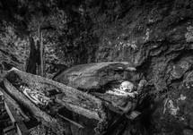 skeletons buried in logs
