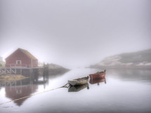 boats tied to the shore in fog