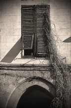 old shutters in a window and vines