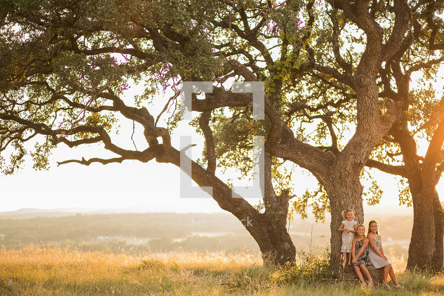 Little girls siting by a large tree