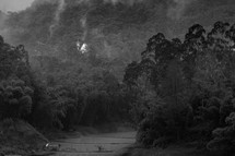 river through a jungle
