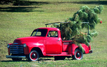 An antique red Chevy truck with Christmas trees out in the rural countryside used to pickup and delivery Christmas trees reminiscent of a nostalgic country Christmas in the rural south parked on a grassy field.
