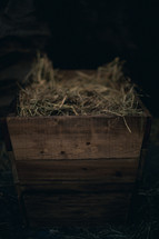 The manger filled with hay